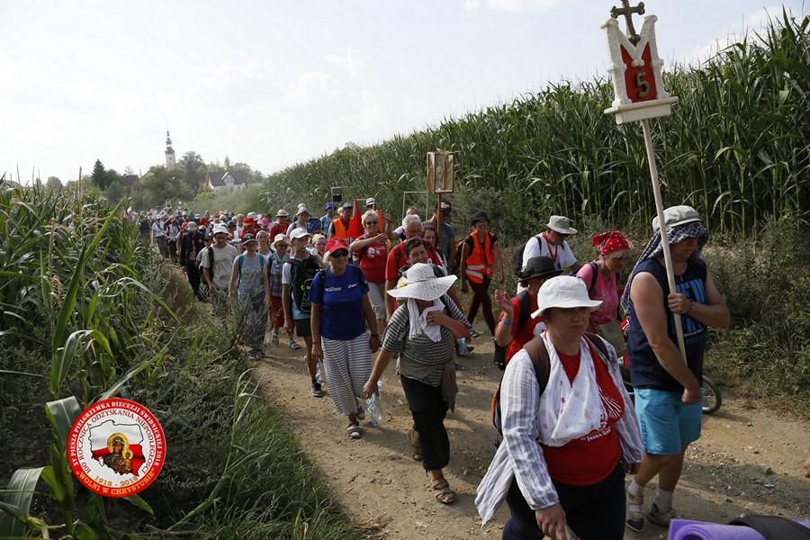 15 piesza pielgrzymka świdnicka, parafia św. brat albert świebodzice